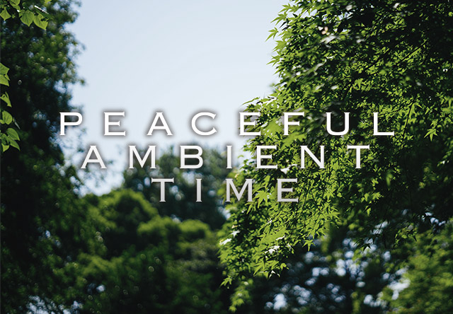 PEACEFUL AMBIENT TIME